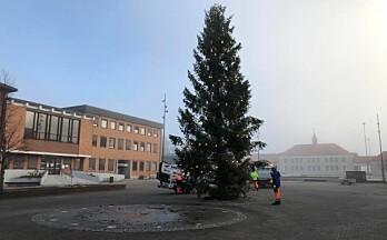 Nå er julegrana oppe på Rådhusplassen