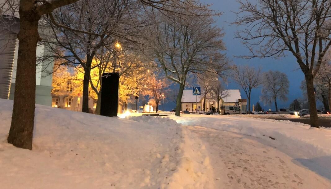 Hvit jul er ingen selvfølge i år. Kanskje ikke i det hele tatt. Dette bildet er fra forrige vinter.