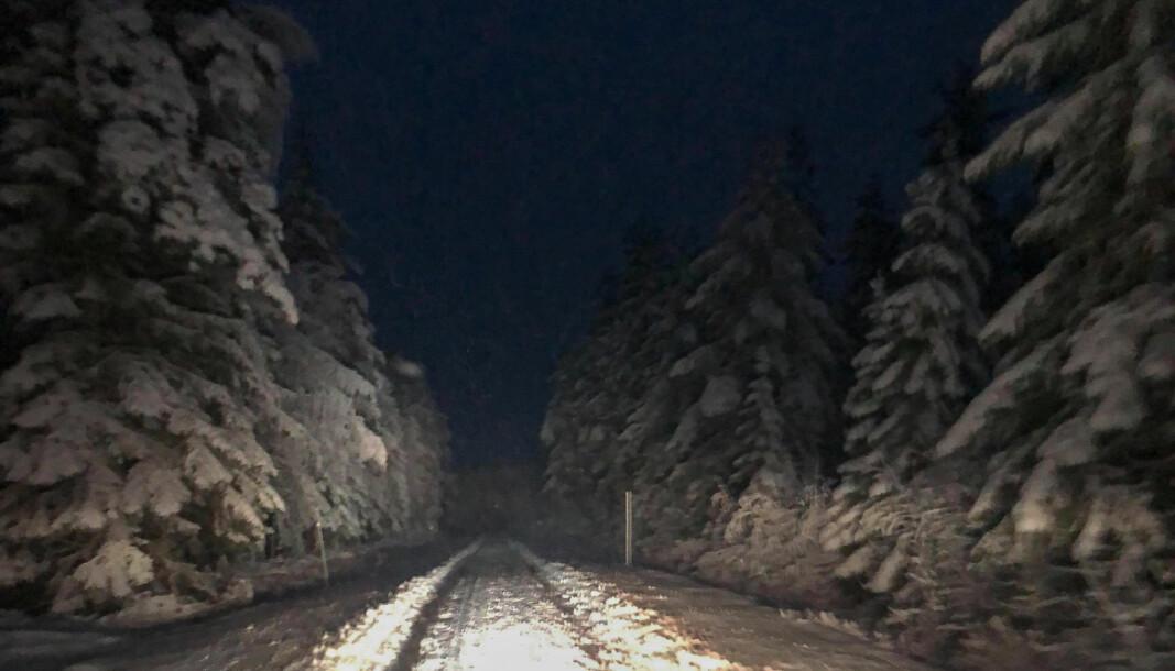 Leserbilde fra Varaldskogen rundt kl 08.30 mandag. Ikke alle veier får nødvendig vedlikehold samtidig, og Kongsvinger kommune innrømmer i sine generelle retningslinjer at de har en prioritert rekkefølge. Hovedveiene tas først.