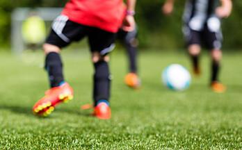 Samtlige grupper har falt fra idretten – bortsett fra én