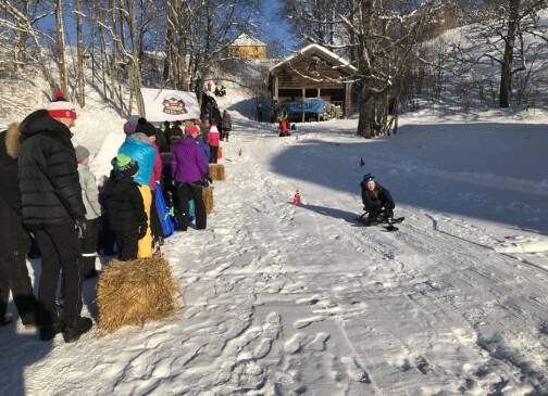 Vinterfestivalen avlyses