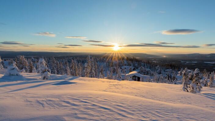 Brødrepar fra Austmarka gjør suksess med hytteutbygging