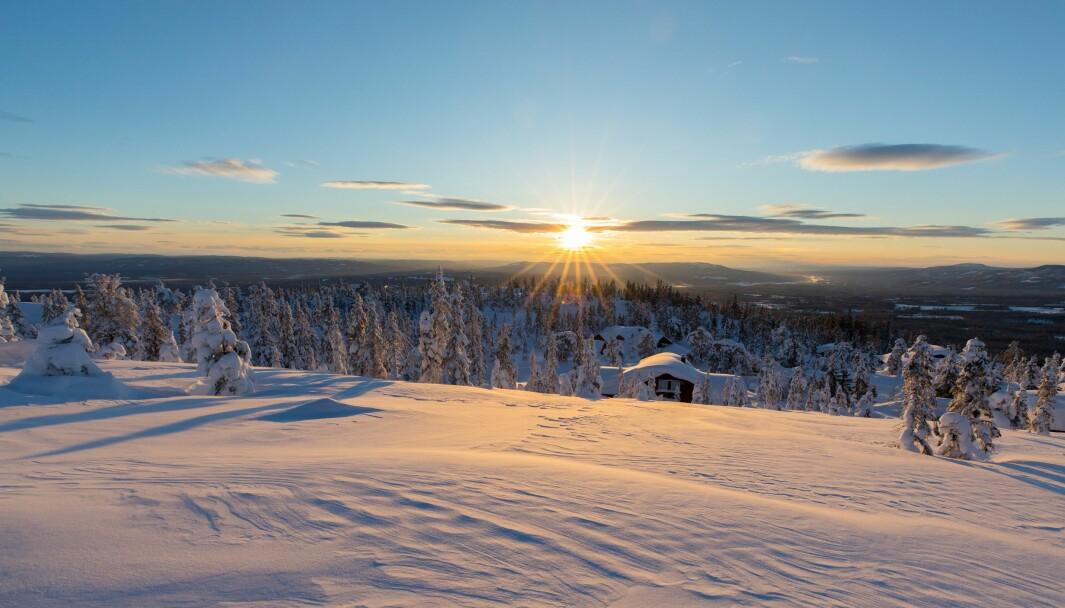 Birkenåsen ligger ved starten av Birken. Området byr på blant annet på muligheter for alpint, langrenn, terrengsykling, golfbane, turområder, jakt og fiske.