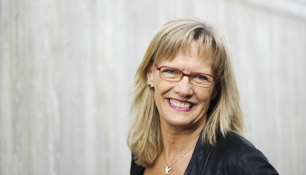 Karin Andersen, Sosialistisk Venstreparti, Hedmark