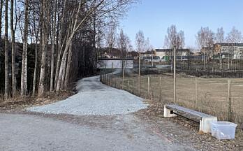 Da snøen tinte hadde den lille stien blitt grusvei