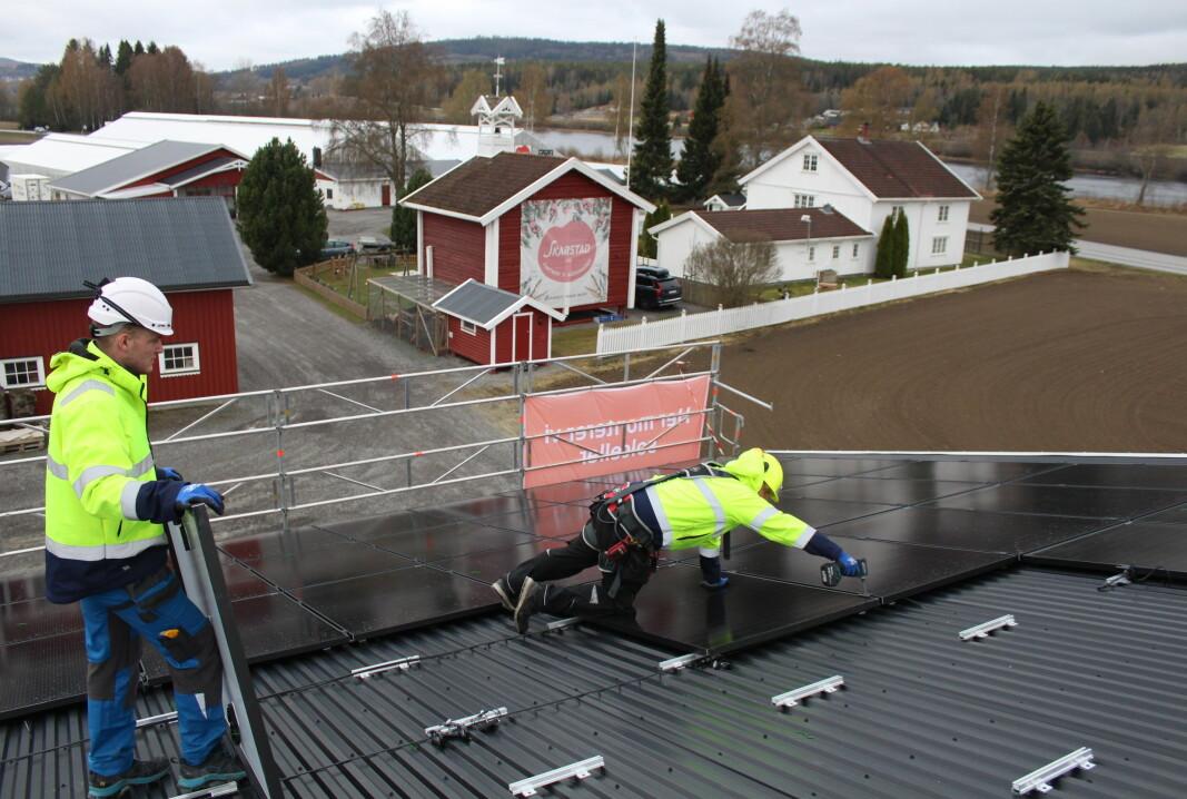 Hele 680 slike solcellepaneler skal installeres på låvetakene hos Skarstad Gartneri. Montørene startet installasjonsarbeidet på mandag og sier de trolig vil være ferdige med potetlagertaket før onsdagen.