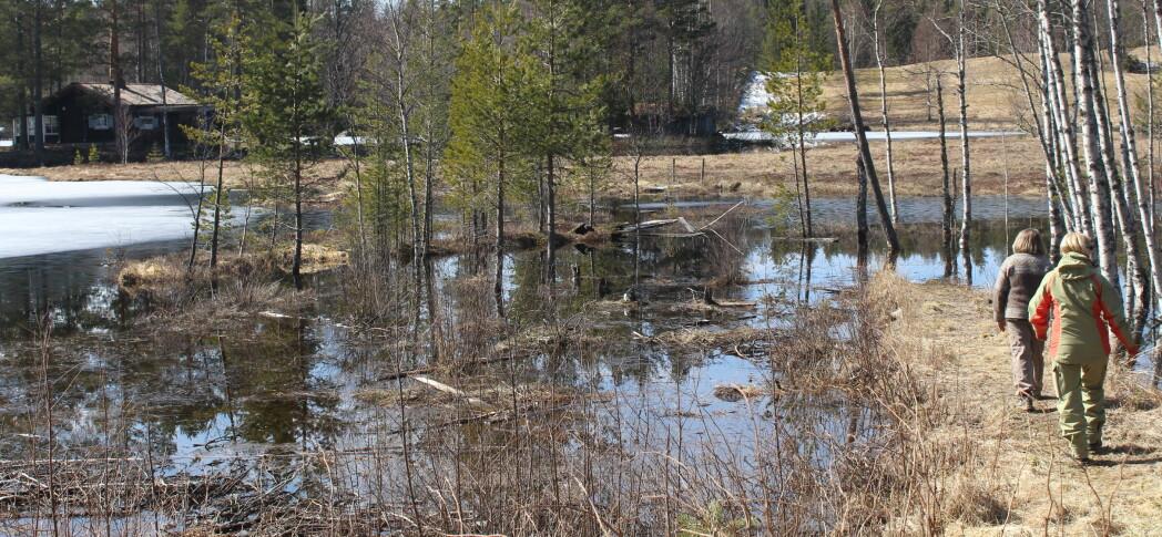 Innsjøene tømmes og flyter over – grendeforeningen ber om strengere reguleringskrav