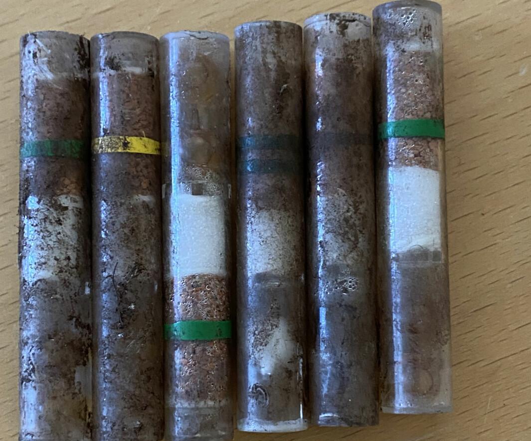 Det var disse ampullene som andre klasse ved Langeland skole fant ved festningsområdet. De inneholder blant annet etsende og giftige stoffer, men er ufarlige så lenge ampullene er intakte.