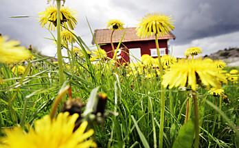 Sverige-hytteeiere tapte strid om karantene i lagmannsretten