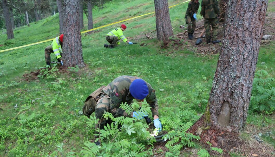 Forsvaret gravde rundt trærne på området, ettersom nedgravde ting ofte dukker opp igjen fordi røttene trekker det opp.