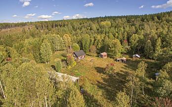 Kulturminnedag på Finnskogen