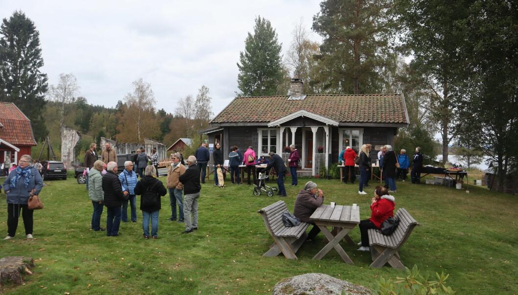 Mange hadde tatt turen til bydgetunet på Austmarka lørdag, da historielaget arrangerte tundag.