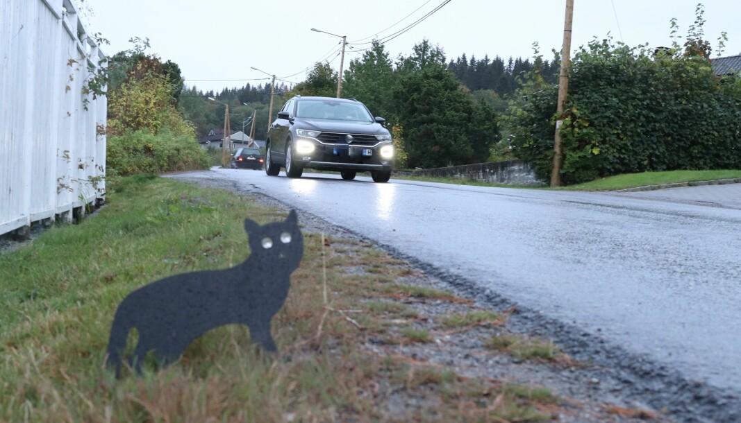 En beboer har laget sin egen fartsdemper og håper en svart katt vil kunne avdempe farten, men virkemiddelet er nok dessverre noe kortvarig.