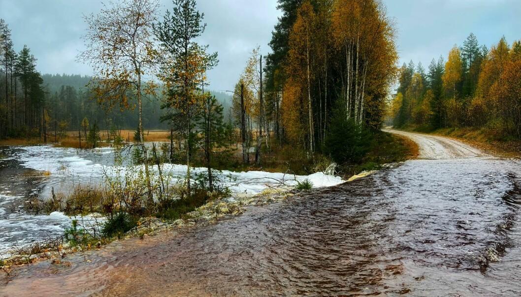 Østre Varaldskogveg er under vann.