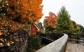 Den fargerike høsten