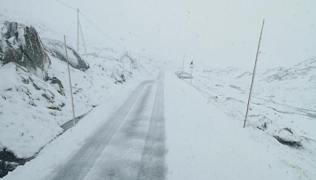 Skal du til fjells i høstferien, så anbefaler forsikringsselskapet at du skifter til vinterdekk. Det kan være fare for snø i høyden.